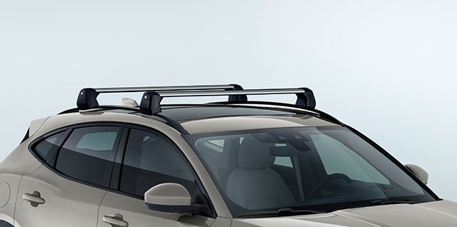 ROOF CROSS BARS (REQUIRE ROOF RAILS)